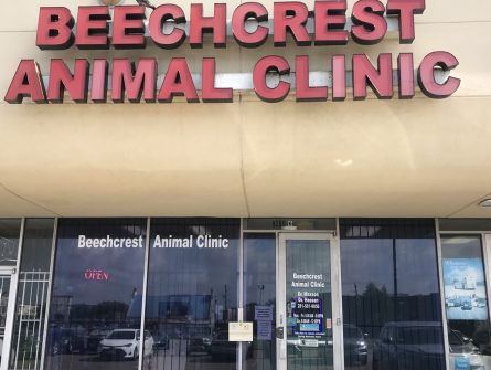 beechcrest animal clinic store front
